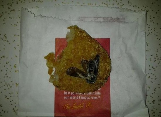Fried Roach In McDonald's Hash Brown and Arby's Finger on Sandwich