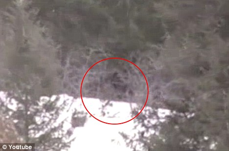 Bigfoot in Idaho