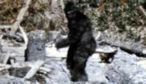 Mythical Bigfoot alleged photo