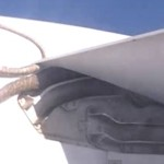 Shocking Video: Python On Plane Wing
